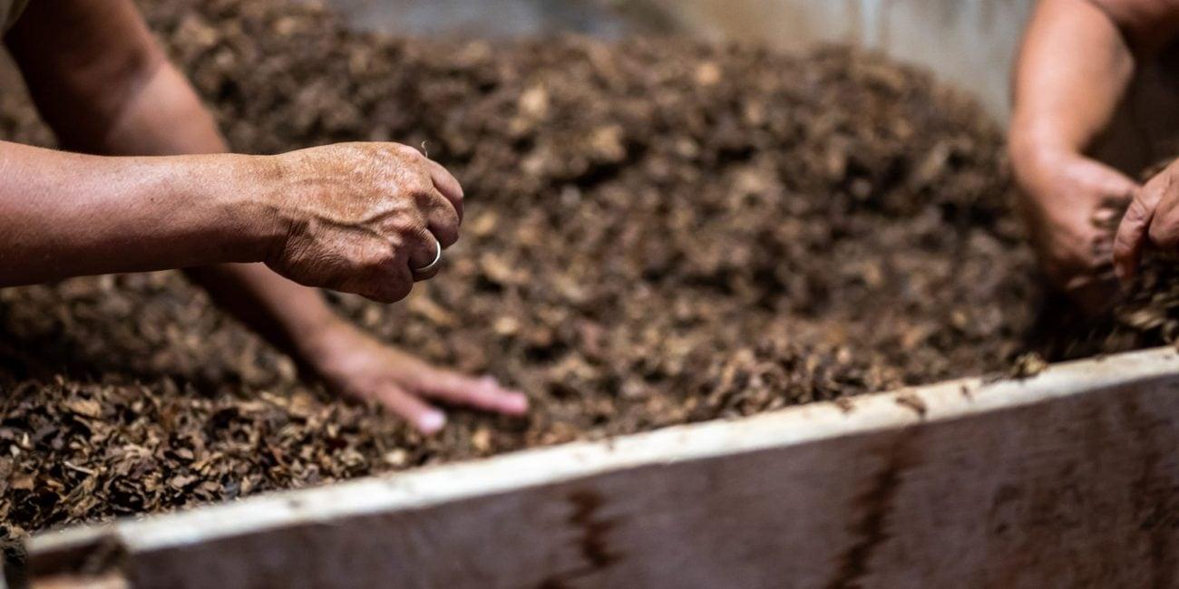 gartentipp richtig kompostieren